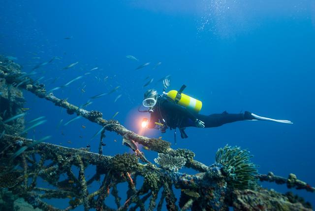 Diver at a Wreck
